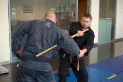 Martial Arts Workshops